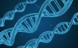 DiaCarta (帝基生物)荣获美国国家癌症研究院 (NCI)第二期合同资助其液体活检cfDNA放疗监控检测临床报批