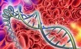 Nature:新型DNA标签证实血液中细胞发育树的存在