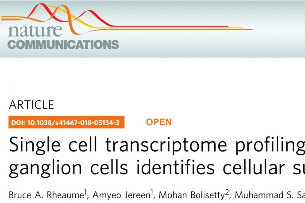 文献解读 | 10× Genomics单细胞转录组测序确定视网膜神经节细胞亚型