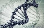 """NEJM:肿瘤演化过程大揭秘,""""三振出局""""(突破、扩张、浸润)"""