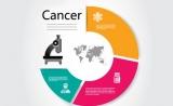 【干货】国内小分子抗肿瘤药物自主研发概况