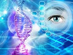 Nature综述:基因疗法在治疗眼科疾病方面取得了哪些进展?