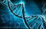 如何让DNA测序的成本更低?PNAS又出新招
