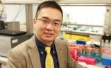 """这次是""""智能凝胶"""",顾臻团队癌症免疫疗法新成果登Science子刊"""