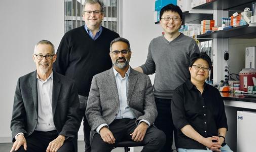 当合成生物学遇上CRISPR,张锋又成立新公司了