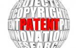 2015年中国生物技术专利申请和受理情况