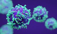 国际顶级医学期刊NEJM:超七成口咽癌竟然是因HPV导致,原因是口腔性接触