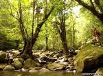 走进马来西亚神秘岛屿:婆罗洲