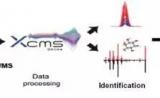 APT文献   解锁血浆代谢组学新姿势