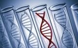 遗传变异对基因表达有何影响?33种肿瘤类型免费在线查询