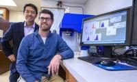 "Cell:一个新的""免疫检查点"",有望与癌症疫苗联合抗癌"