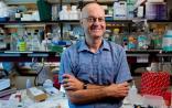 MIT:衰老已被证明可减缓/阻止,一颗药丸能否永驻青春?
