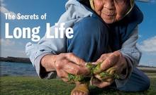 科学美国人副主编:两种长寿思路探讨