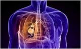 有效率90%!肺癌新靶向药劳拉替尼Lorlatinib疗效显著