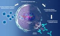 胰腺癌新型代谢类药物II期结果OS翻倍 死亡风险降低92%