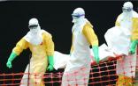 """埃博拉病毒肆虐 生物疫苗行业不会""""后会无期"""""""