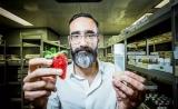 需要什么食物,其实取决于肠道微生物?