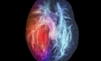 """Nature子刊:血液检测诊断""""恶性脑瘤"""",侵入性更小、结果更快"""