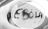 中国疾控:关于埃博拉病毒 你需要了解的!
