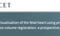 柳叶刀:3D成像胎儿心脏,抢夺先天缺陷的救命时间