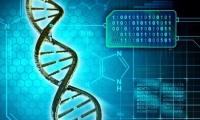 用DNA藏匿电脑病毒:一次基因测序就劫取机密