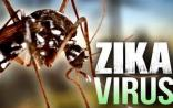 中国科学家跨界攻克寨卡病毒抛出的世界疑问