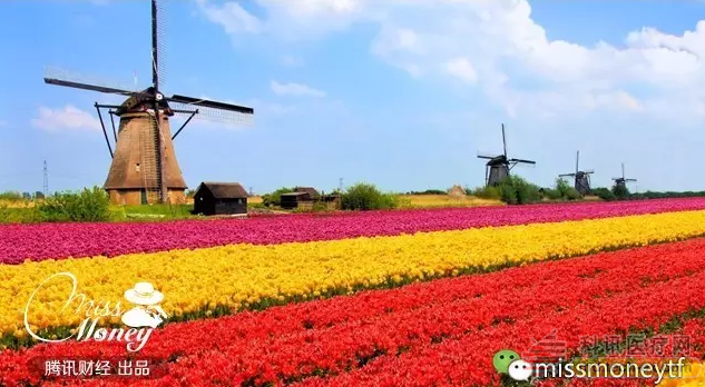 澳洲荷兰风景简笔画