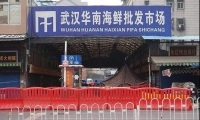 Science:新型冠状病毒,武汉华南海鲜市场并非唯一来源?