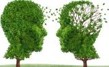 Science:抗氧化剂或能在帕金森病早期阻断神经退化