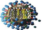 流感病毒对人类的影响