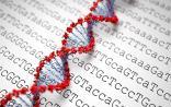 Science子刊:新高通量测序技术发现最适合对抗癌症的T细胞