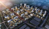 专家研讨建设世界一流高科技园区