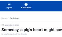"""猪年到!这里有你或许不知道的关于""""猪""""的冷知识"""