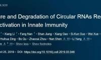 多项重要突破!华人学者今日带来3篇《细胞》和2篇《科学》
