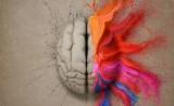 Nature子刊:帕金森氏病可用皮质醇治疗