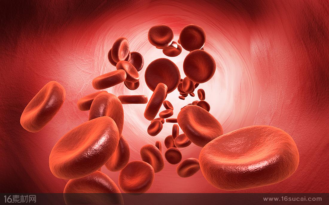 患有最严重β-地中海贫血的人需要终身定期接受输注红细胞和去铁治疗.