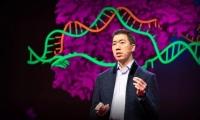 刘如谦(David Liu)放大招:超越CRISPR,实现碱基任意转换与增删,可修正89%的人类遗传病
