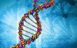 基因检测:从价格战打到医用价值战!