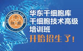 2014年12月22-26日华东干细胞库间充质干细胞(MSC)技术培训开班了!