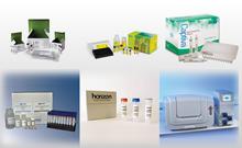 生物研究领域最新创新产品汇总