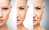 Nature子刊:这种廉价安全的抗氧化剂能延缓皮肤衰老