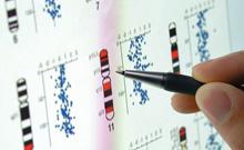 长读取片段填补组装缺口:基因组测序攻克高通量短板