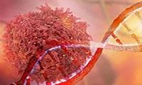 为什么说吃红肉致癌?这回科学家给出了分子证据