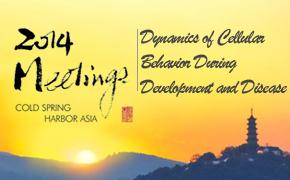 2014年冷泉港亚洲会议:Dynamics of Cellular Behavior During Development and Disease