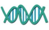 Nature子刊揭示:失智症相关基因网络