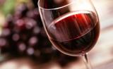 Nature子刊:首次证明,低剂量酒精对大脑有益