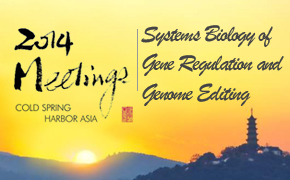 Systems Biology of Gene Regulation and Genome Editing