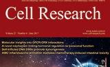 《细胞研究》影响因子升至15.606