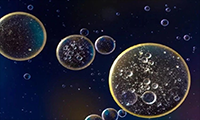 PD-1阻断疗法有用吗?日本科学家提出一种新的疗效指标