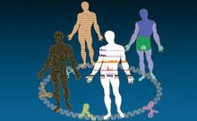 Cell:细胞与转座子之间永不停息的基因战争